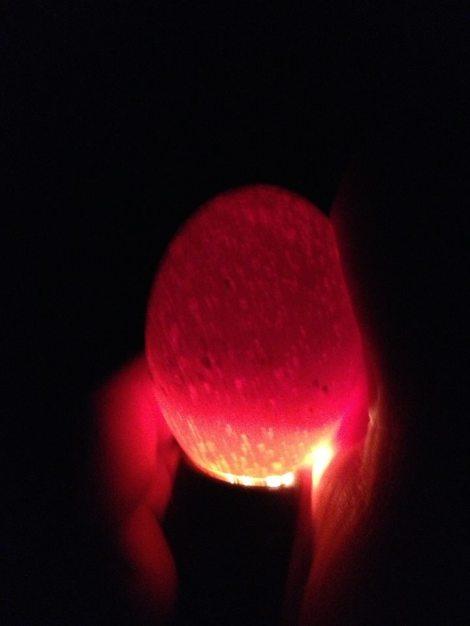 A fertile, but porous egg.