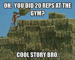 Gym or hay field?
