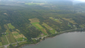 Aerial view of Point La Nim. Maccurdy Farm is in the middle, and the woodlot stretches beyond the long road that runs back beyond the fields