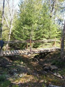 Bridge over trickling waters